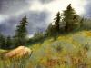 meadows-sm