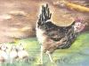hen-chicks